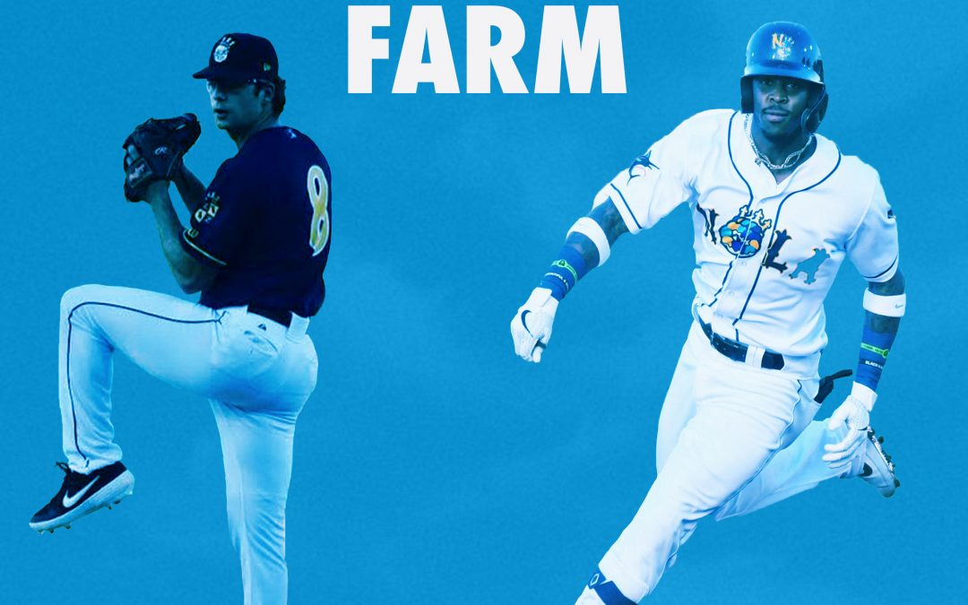 What you should really think about the Marlins farm system